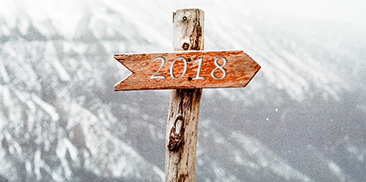 VegaSystems wünscht ein frohes neues Jahr 2018